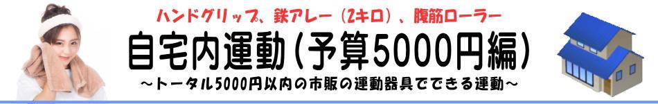 自宅内運動(予算5000円編)